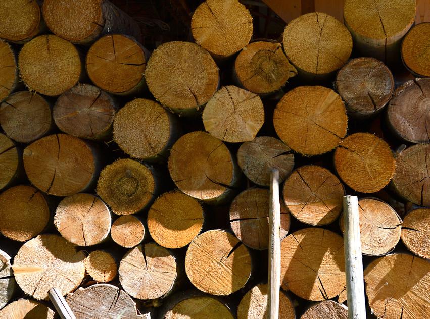 Les bois issu du Mas du Soleil