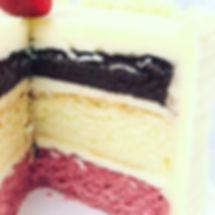 Neapolitan Cake.jpg