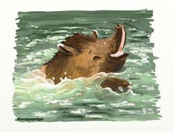 tapirsplash