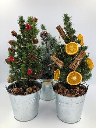 Festive Berry Mini Decorated Living Pot Grown Christmas Tree