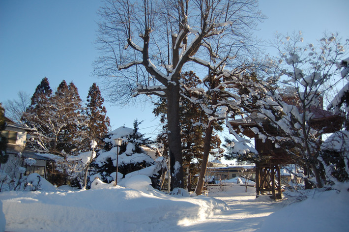 2017年 冬(12月〜2月)