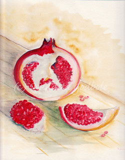Pomegranate, watercolor, 2010