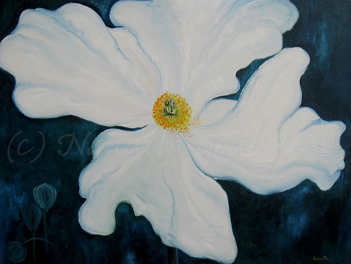 "White Poppy, 36"" X 48"" Oil, 2011"