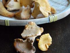 Recipe: Easy Cheesy Chanterelle & Chicken Puff Pastry Tart