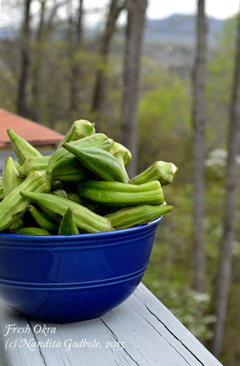 For The Love of Okra!