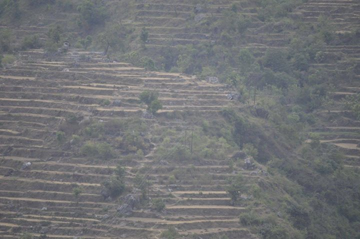 Stepped farming, Mussourie