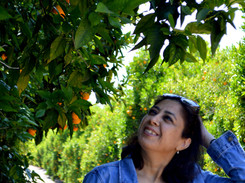 Recipe: Tangerine Raita