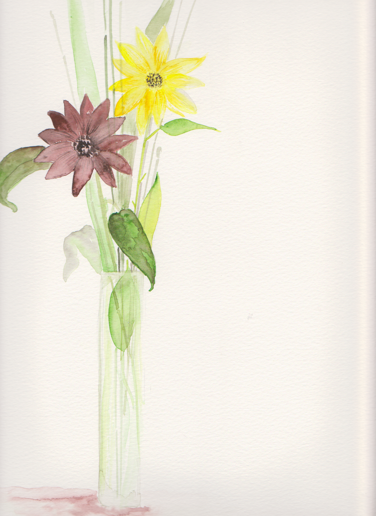 Sunflowers & Equisetum, watercolor,