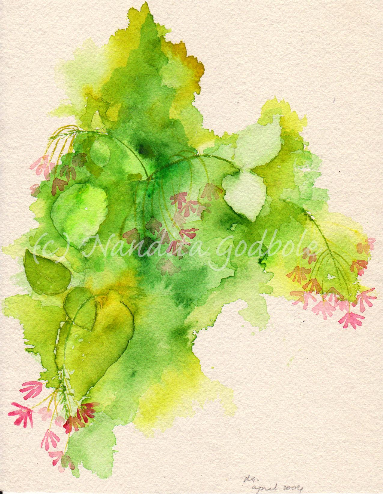 Quisqualis indica, watercolor, 2004
