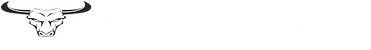 logo-maverick-white.png