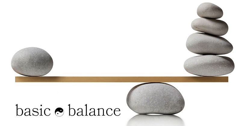 basic balance header 2.jpg
