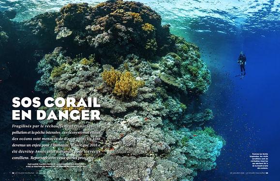 FigMag26-01-2018 Recifs Coralliens.jpg