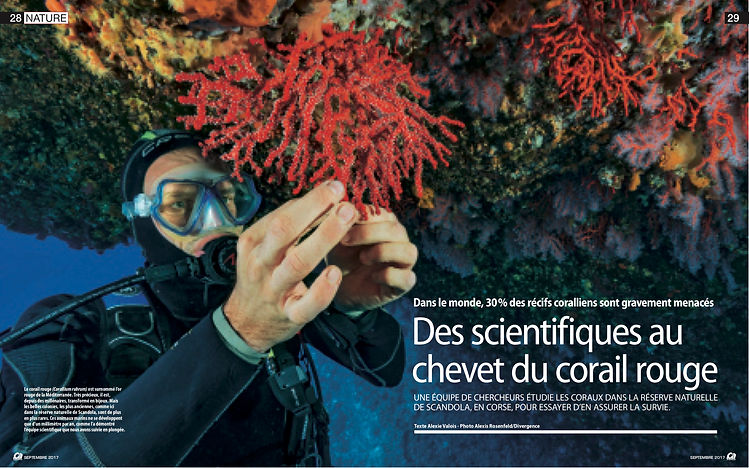 Ca m'interesse 09-2017- corail rouge Med