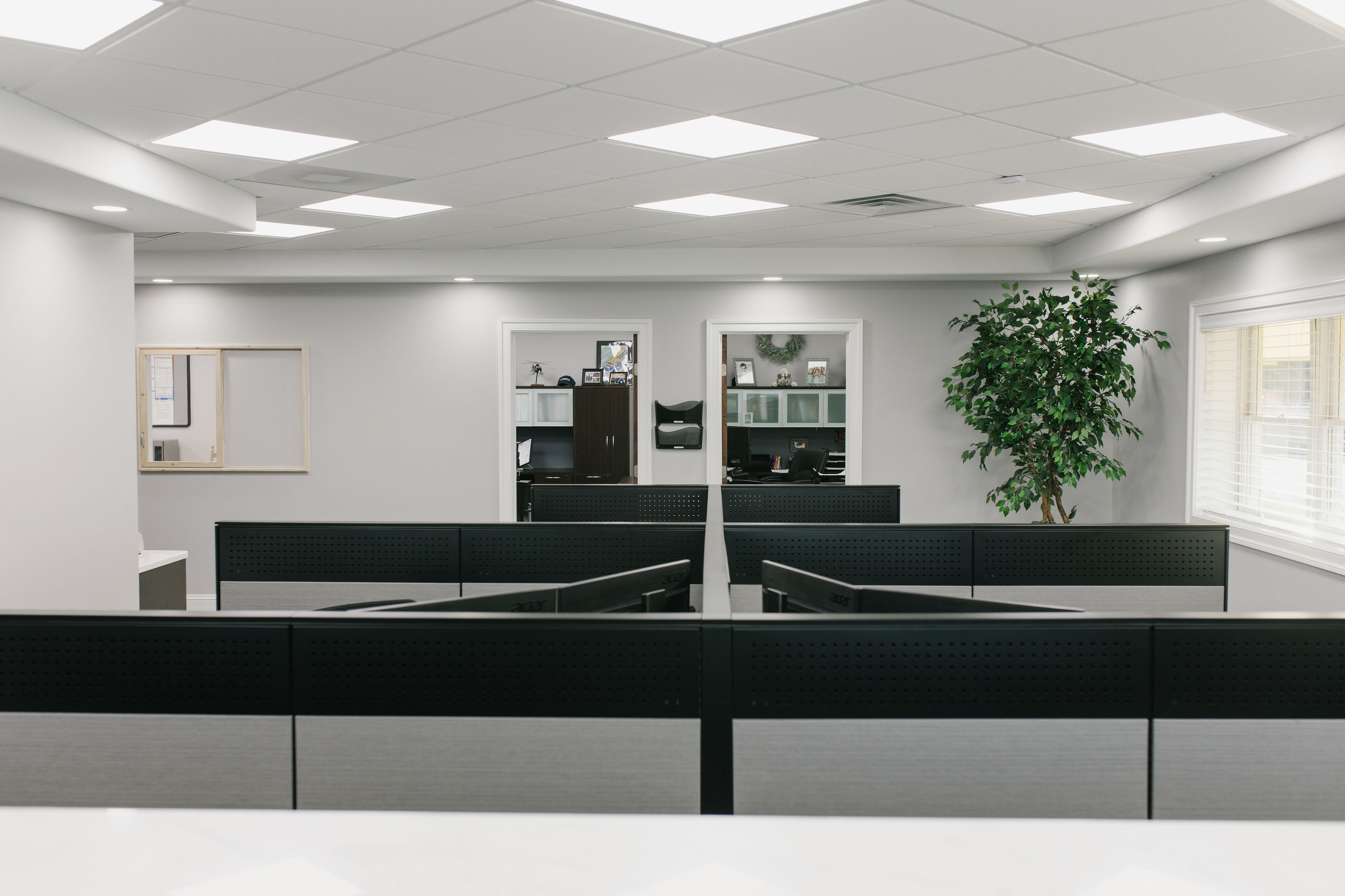 Cubicles & back offices