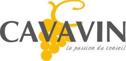 Cavavin varces