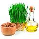 Олія зародків пшениці.png