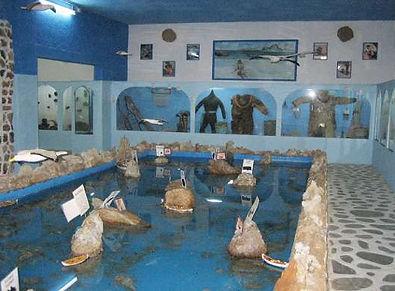 μουσείο θαλάσσιων ευρυμάτων.jpg