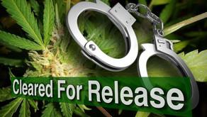 Asa Hutchinson to Pardon Those Arrested for Possession of Marijuana