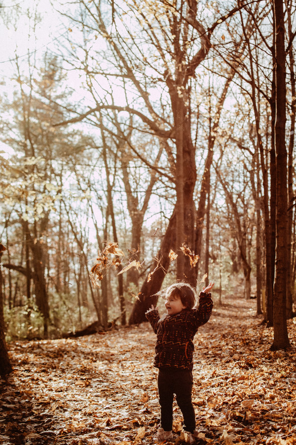 Toddler throwing leaves in the air at Price Park in Elkhorn Wisconsin. Fall day with golden sun behind her. She is on the trail and smiling and having fun.
