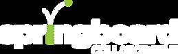 SpringboardCollab-white-logo.png