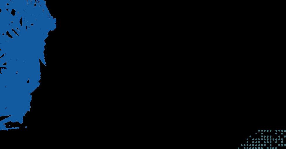 LEFTPLEXUS.png