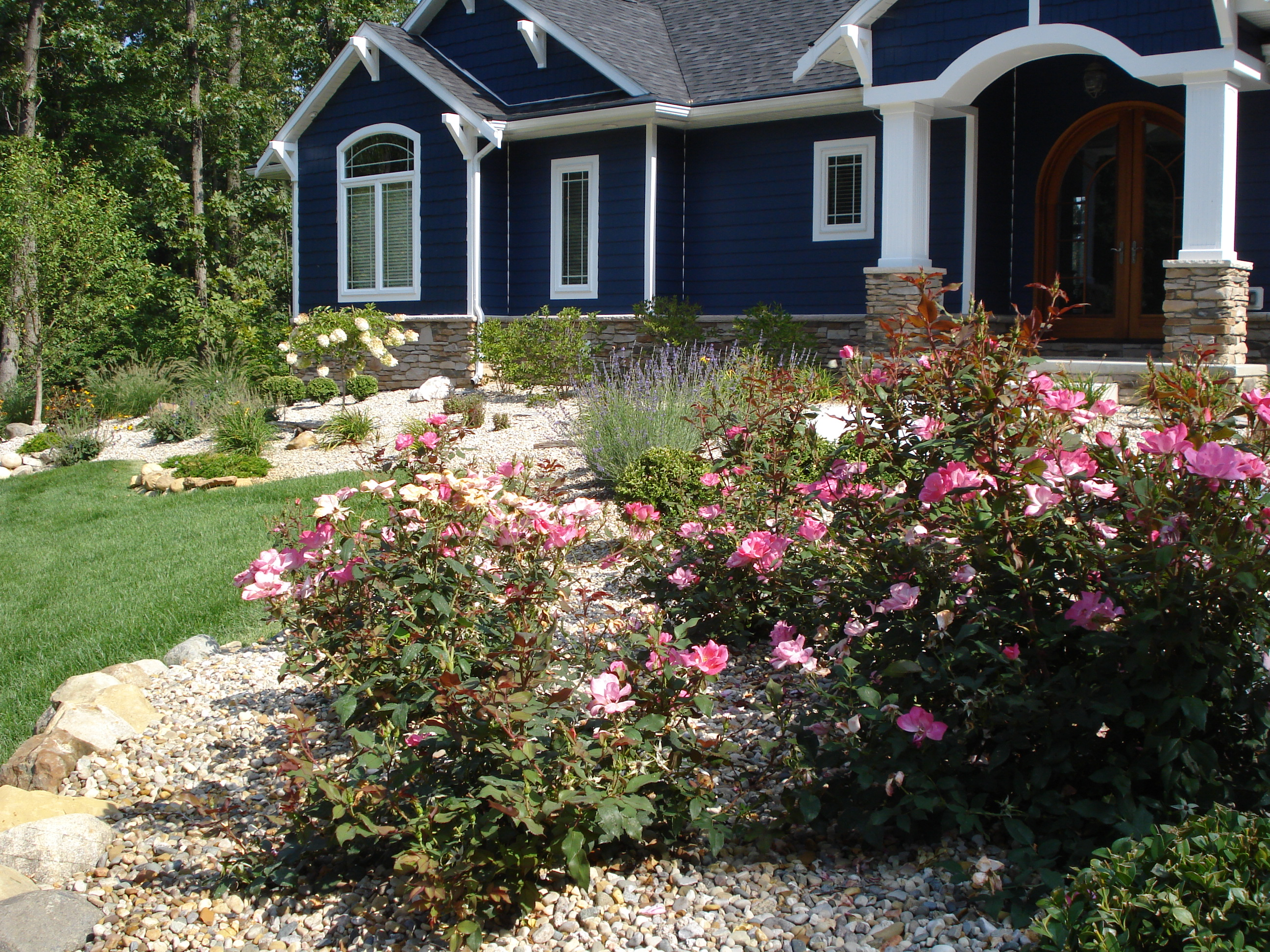 Perennials & Shrub Plantings