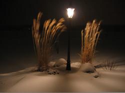 Lighting & Illumination