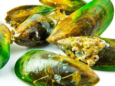 C02 Extracted NZ Green Shell Mussel