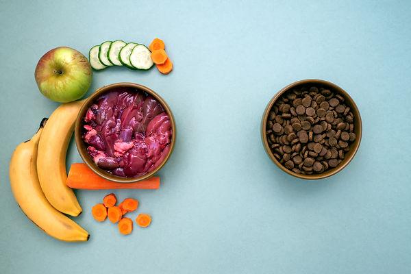 Dry pet food with natural ingredients. R