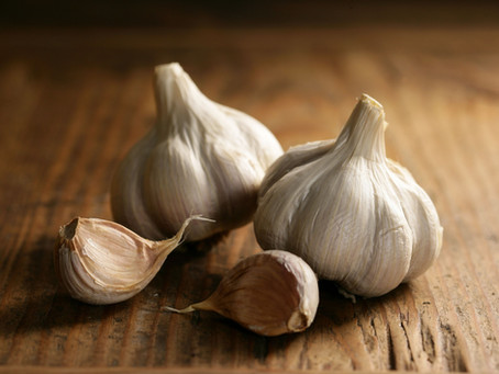 Garlic & the confusion about safety