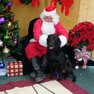Santa Paws 2009