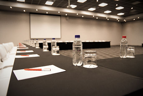 conference%201_edited.jpg