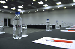 conference 2.jpg