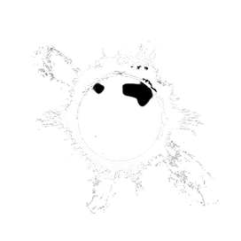 Solcura_-_Logo_-_White_no_text-removebg-preview.png