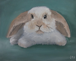 bunny-painting-charlotte-kid