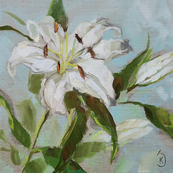 painting-of-white-lillies-artist-kate-stewart