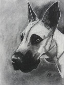 drawing-charlotte-teen