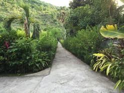 Zufahrt zur Villa