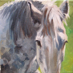 GreyShire (SOLD)