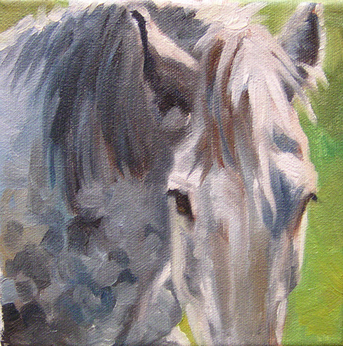 Grey Shire (SOLD)