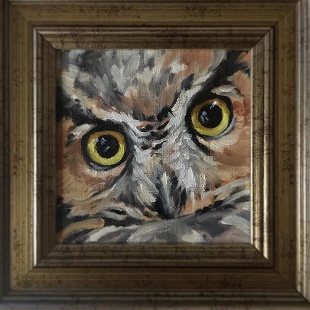 Yellow Gaze: Great Horned Owl