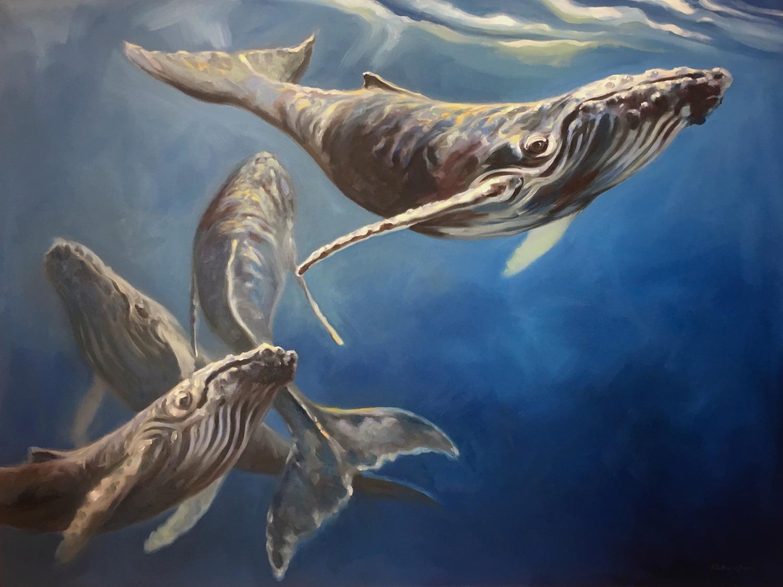 Celebration: Humpback Whales