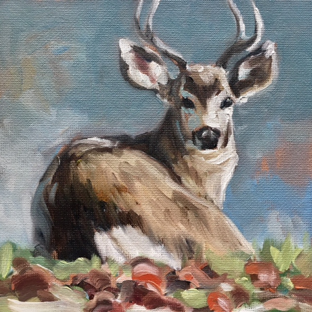 Young Buck in Apple Orchard (SOLD)