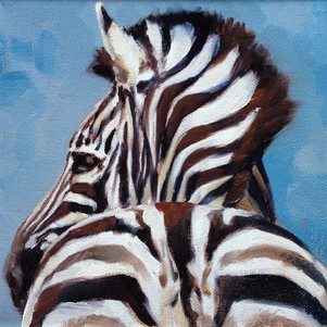 Zebra Rump (SOLD) Prints Available
