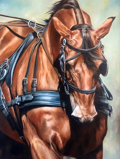 "Horsepower / Oil on Canvas / 30"" x 40"" / SOLD"