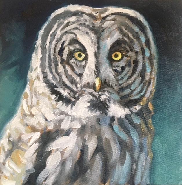 Grey Ghost: Great Grey Owl (SOLD)
