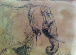 Elephant (SOLD)