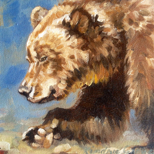 Western Slopes Grizz II (SOLD)