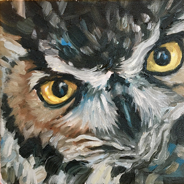 Owl Eyes Great Horned (SOLD)