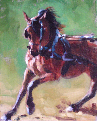 Morgan in Harness I (SOLD)